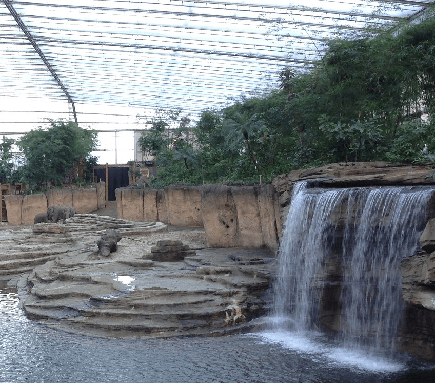 Wildlands Adventure Zoo te Emmen